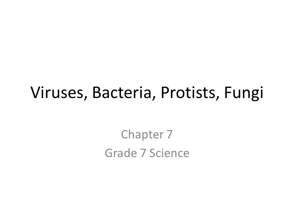 Viruses, Bacteria, Protists, Fungi Chapter 7 Grade 7 Science