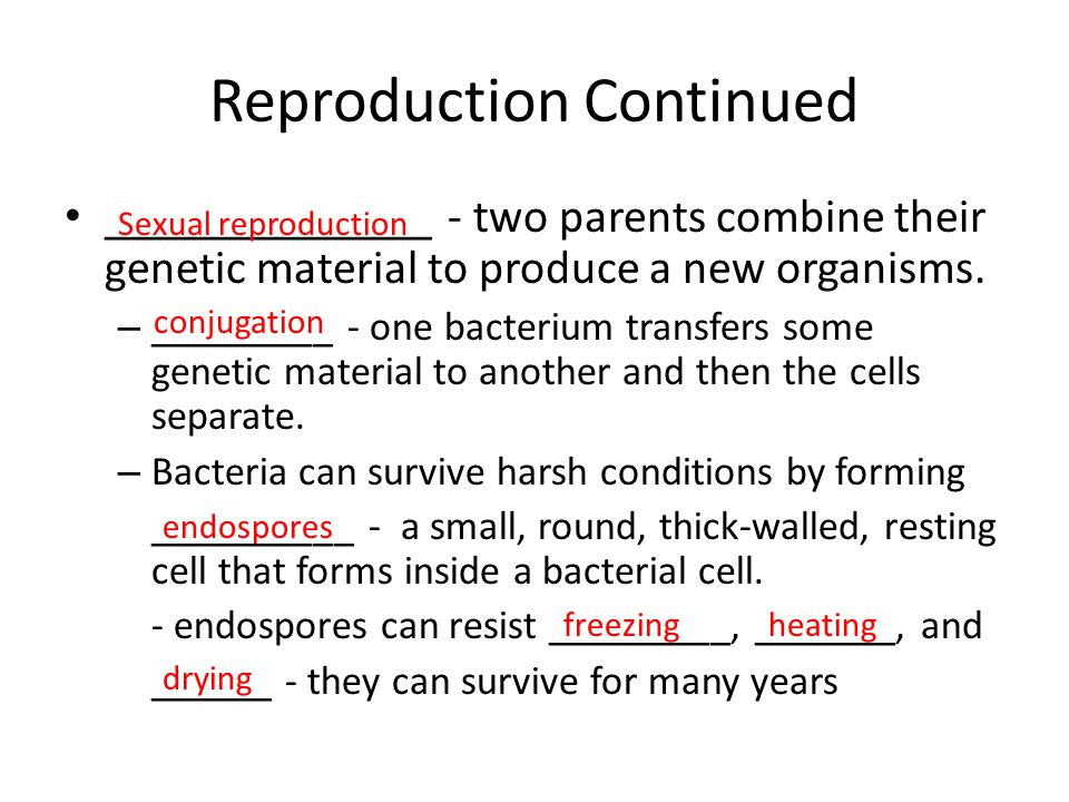 Reproduction Continued ______________ - two parents combine their genetic material to produce a new organisms. – _________ - one bacterium transfers s