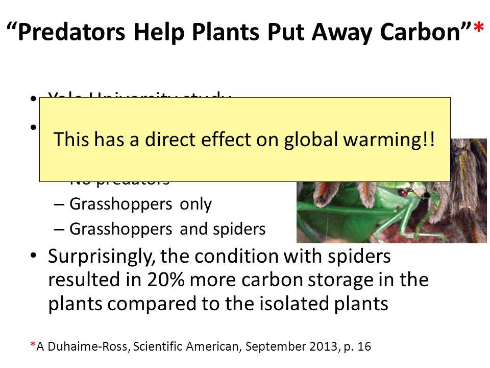 Predators Help Plants Put Away Carbon * *A Duhaime-Ross, Scientific American, September 2013, p.