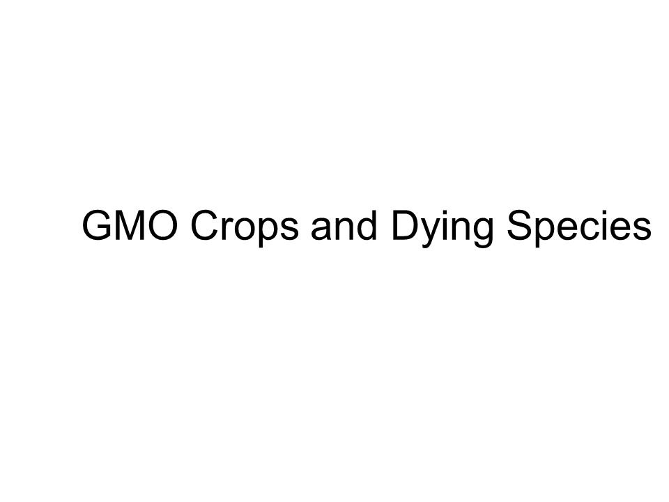 GMO Crops and Dying Species