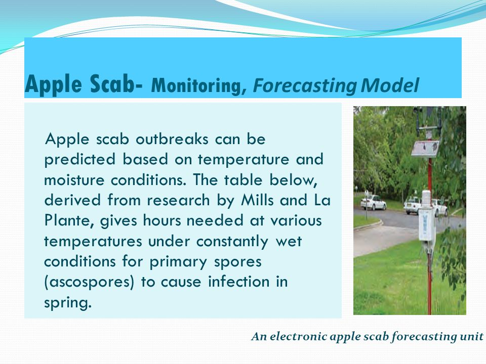 A Chart for Predicting the Occurrence of Apple Scab( Mills, N.Z ) Days until lesions appear Heavy infection Moderate infection Light infection Average temperature (°C) -6040300.5 - 5 1229191410 1221131015 81812918.9-23.9 1026171325.6 Hours of wetness required for infection during spring