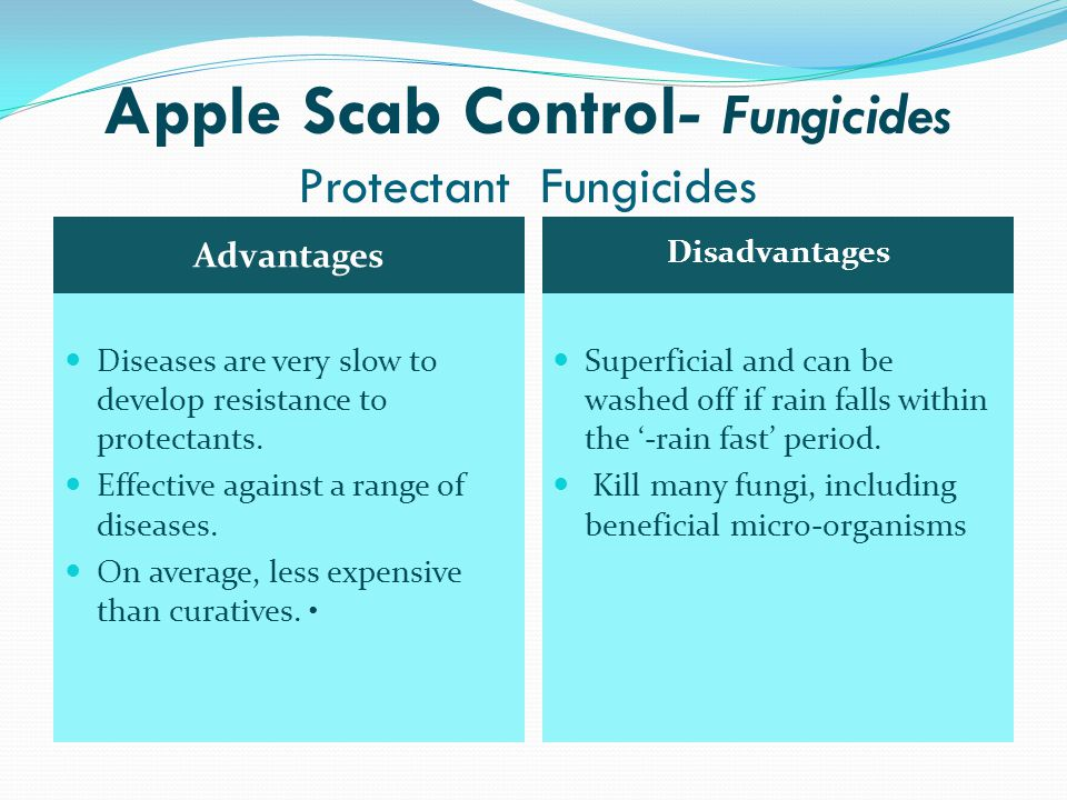 Apple Scab Control- Fungicides Protectant Fungicides Polyram (metiram) Manzate Pro-Stick (mancozeb) Dikar (mancozeb + dinocap) Ziram Captan 80% Maestro 75 DF (captan) Kumulus DF (sulphur)