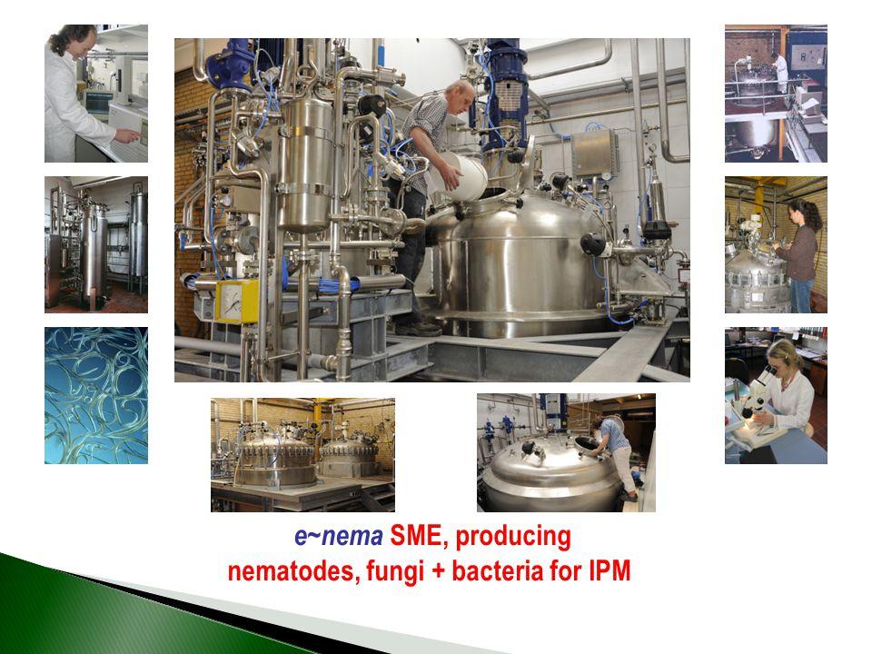 e~nema SME, producing nematodes, fungi + bacteria for IPM
