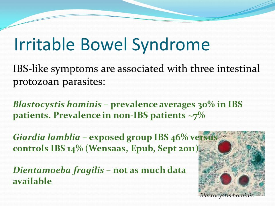 Irritable Bowel Syndrome IBS-like symptoms are associated with three intestinal protozoan parasites: Blastocystis hominis – prevalence averages 30% in IBS patients.