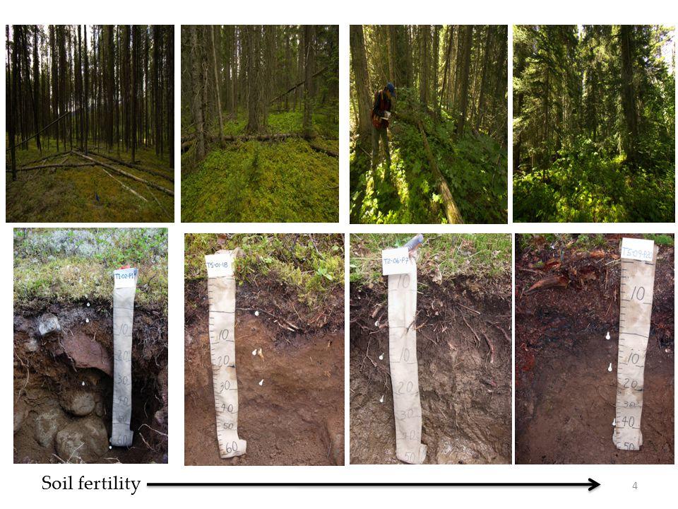 Soil fertility 4