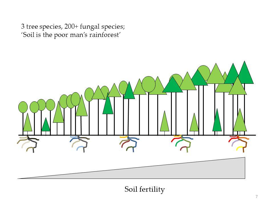 Soil fertility 3 tree species, 200+ fungal species; 'Soil is the poor man's rainforest' 7