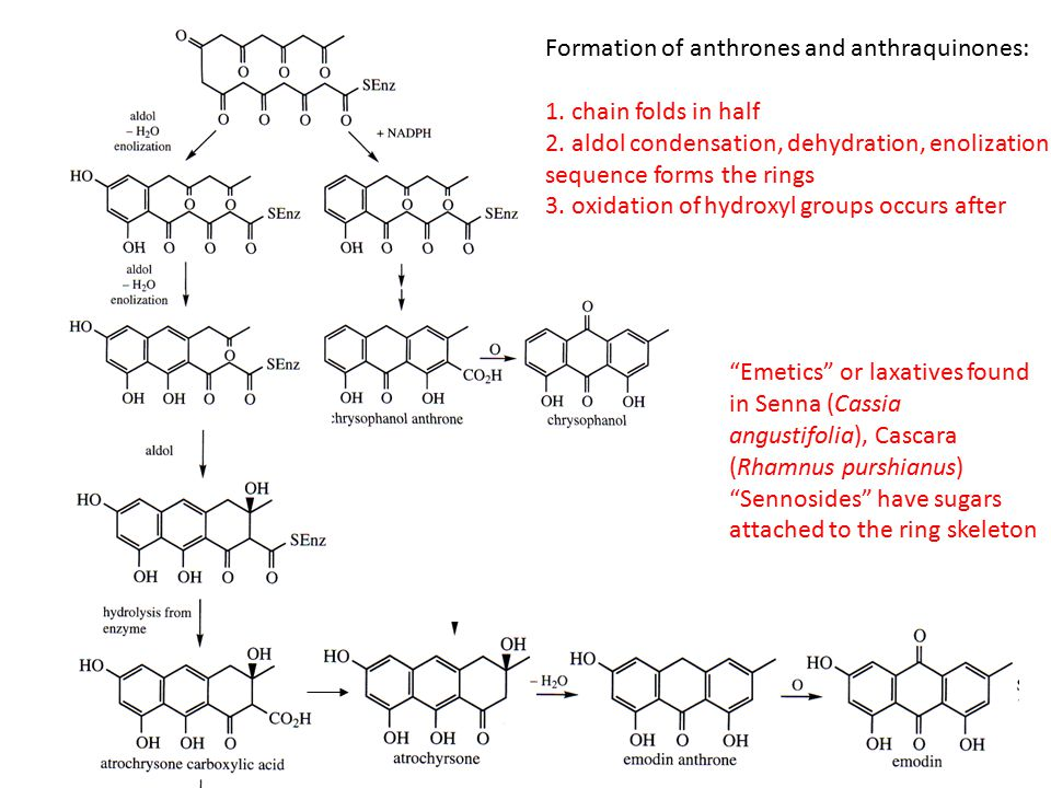 Formation of anthrones and anthraquinones: 1. chain folds in half 2.