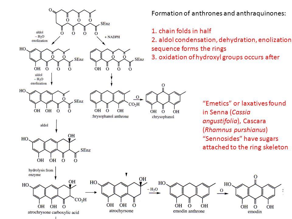 heat, light psychoactiveinactive Ether linkage necessary inactive aromatic ring dec. activity