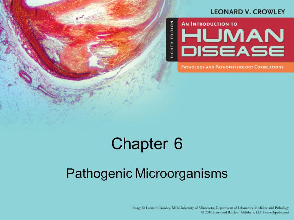 Chapter 6 Pathogenic Microorganisms