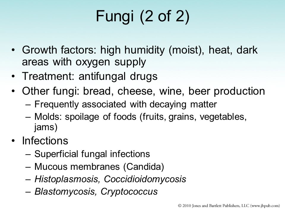 Fungi (2 of 2) Growth factors: high humidity (moist), heat, dark areas with oxygen supply Treatment: antifungal drugs Other fungi: bread, cheese, wine, beer production –Frequently associated with decaying matter –Molds: spoilage of foods (fruits, grains, vegetables, jams) Infections –Superficial fungal infections –Mucous membranes (Candida) –Histoplasmosis, Coccidioidomycosis –Blastomycosis, Cryptococcus