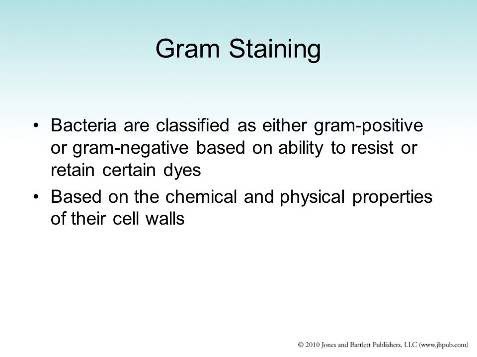 Gram Staining Bacteria are classified as either gram-positive or gram-negative based on ability to resist or retain certain dyes Based on the chemical and physical properties of their cell walls