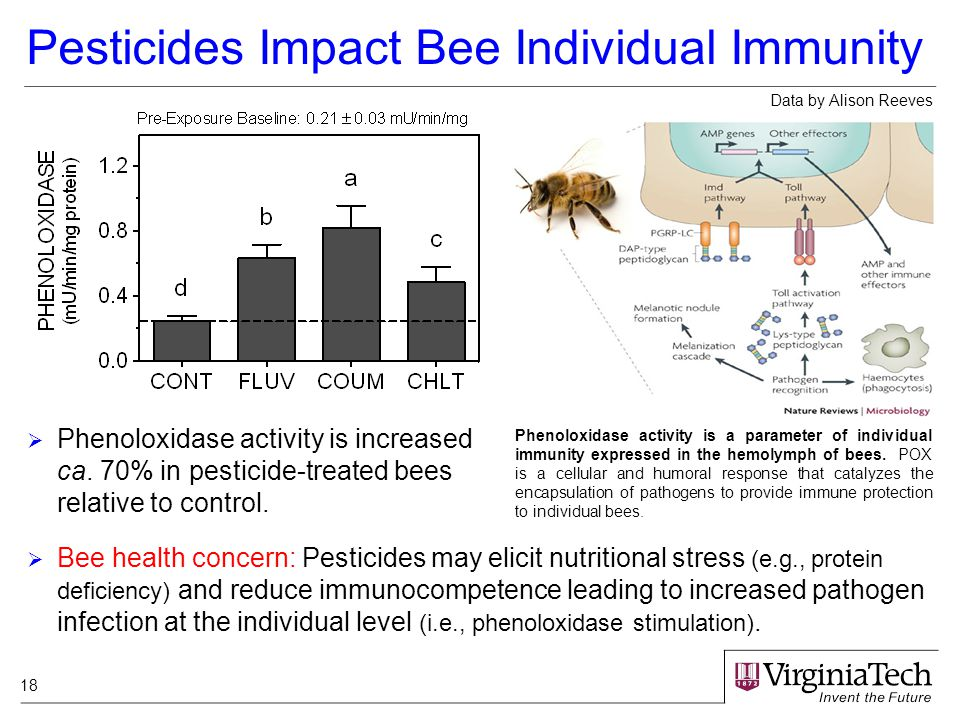 18 Pesticides Impact Bee Individual Immunity  Bee health concern: Pesticides may elicit nutritional stress (e.g., protein deficiency) and reduce immunocompetence leading to increased pathogen infection at the individual level (i.e., phenoloxidase stimulation).
