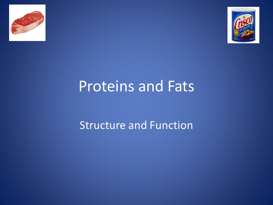 Proteins and Fats Structure and Function