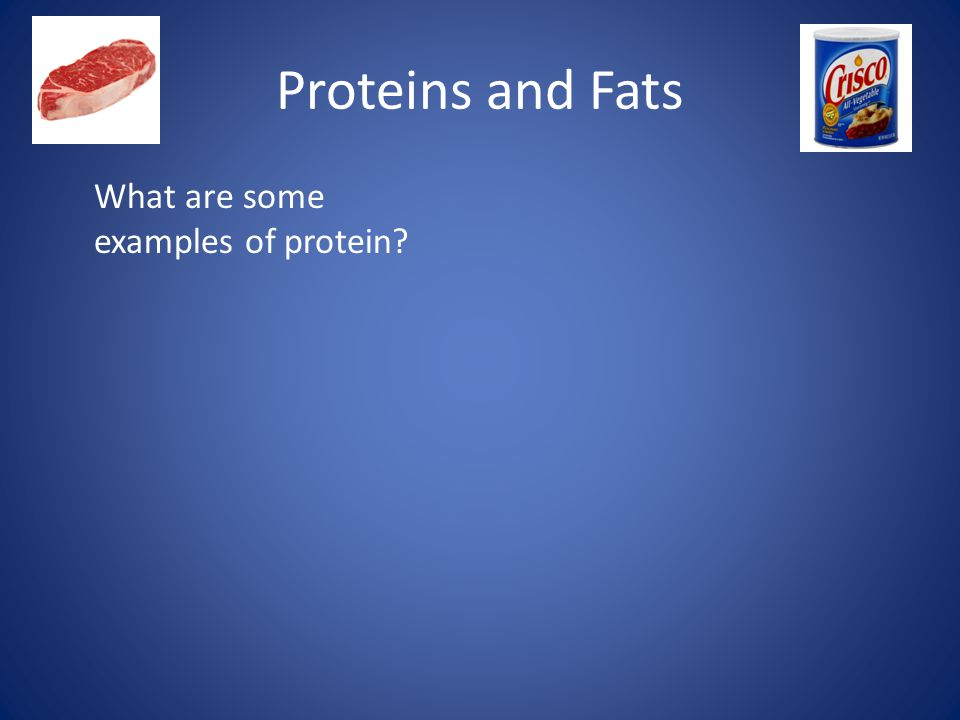 Proteins and Fats What are some examples of protein