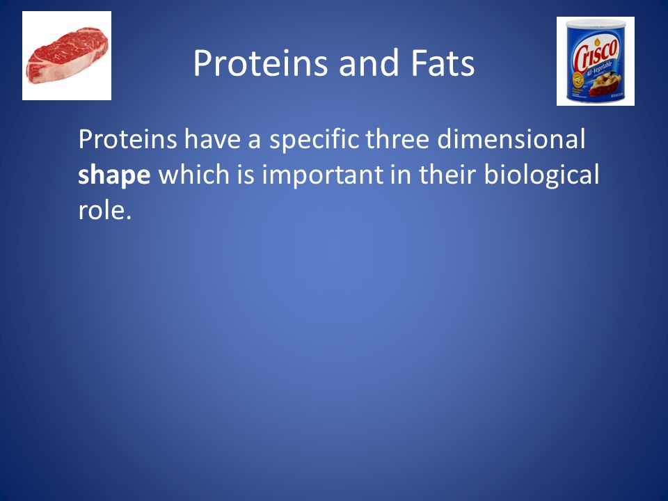 Proteins and Fats Proteins have a specific three dimensional shape which is important in their biological role.