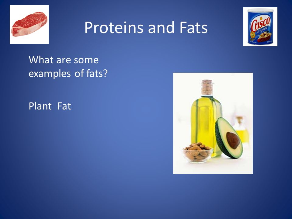 Proteins and Fats What are some examples of fats Plant Fat