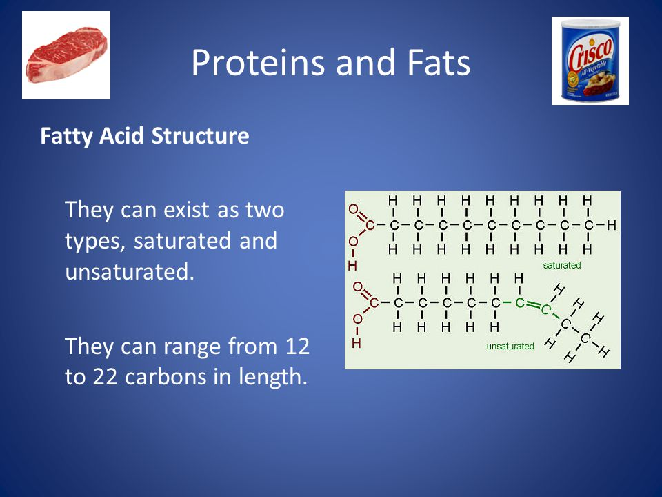 Proteins and Fats Fatty Acid Structure They can exist as two types, saturated and unsaturated.