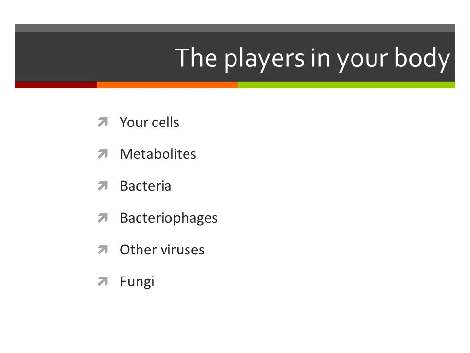 The players in your body  Your cells  Metabolites  Bacteria  Bacteriophages  Other viruses  Fungi