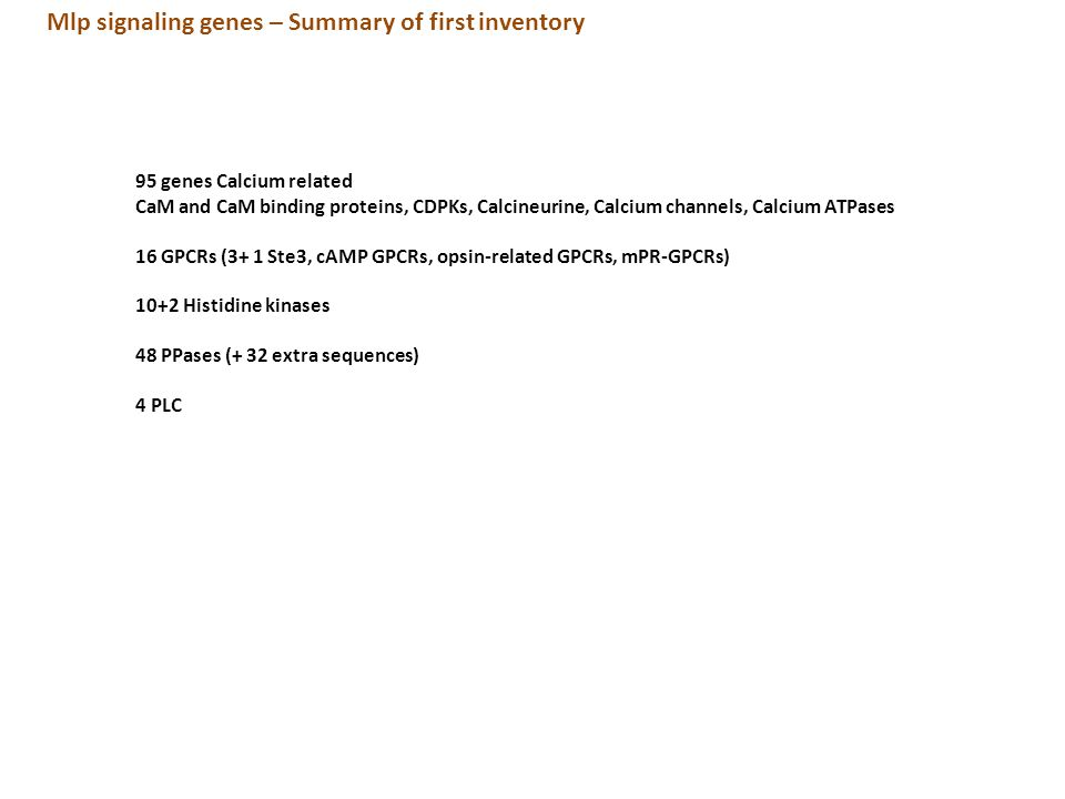 Mlp signaling genes – Summary of first inventory 95 genes Calcium related CaM and CaM binding proteins, CDPKs, Calcineurine, Calcium channels, Calcium ATPases 16 GPCRs (3+ 1 Ste3, cAMP GPCRs, opsin-related GPCRs, mPR-GPCRs) 10+2 Histidine kinases 48 PPases (+ 32 extra sequences) 4 PLC