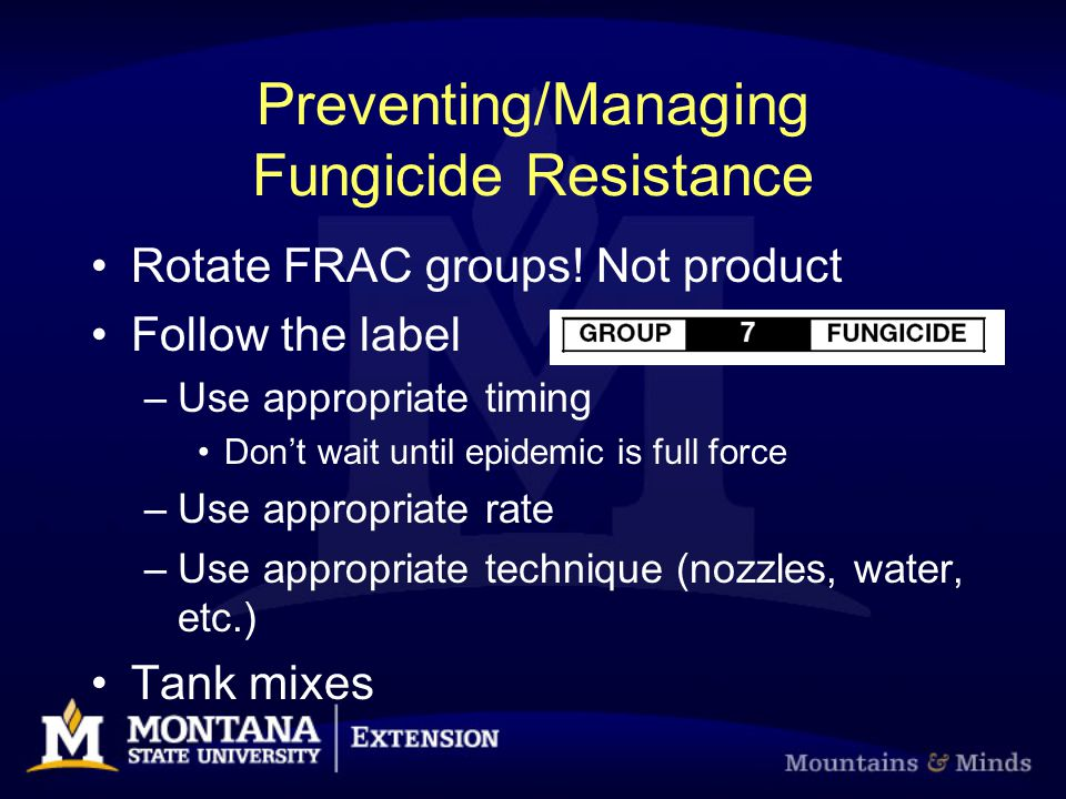 Preventing/Managing Fungicide Resistance Rotate FRAC groups! Not product Follow the label –Use appropriate timing Don't wait until epidemic is full fo