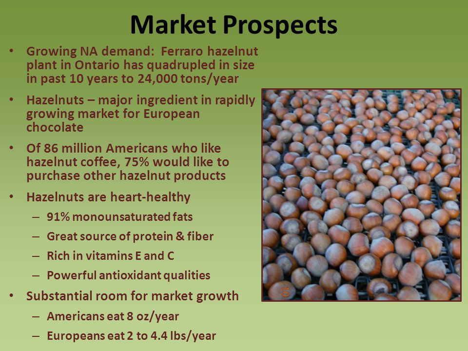Market Prospects Growing NA demand: Ferraro hazelnut plant in Ontario has quadrupled in size in past 10 years to 24,000 tons/year Hazelnuts – major ingredient in rapidly growing market for European chocolate Of 86 million Americans who like hazelnut coffee, 75% would like to purchase other hazelnut products Hazelnuts are heart-healthy – 91% monounsaturated fats – Great source of protein & fiber – Rich in vitamins E and C – Powerful antioxidant qualities Substantial room for market growth – Americans eat 8 oz/year – Europeans eat 2 to 4.4 lbs/year