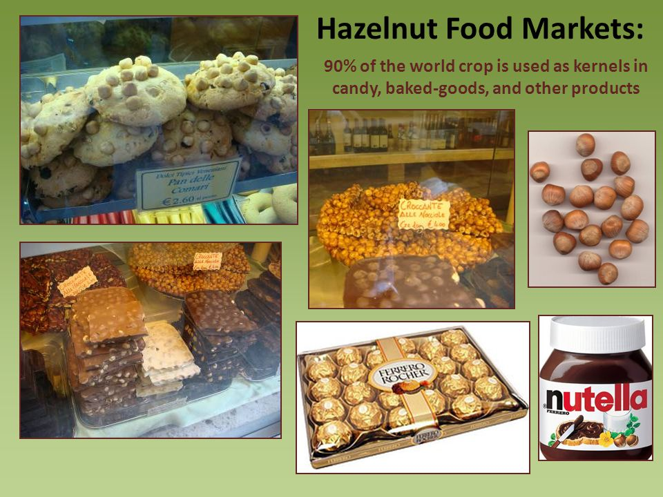 90% of the world crop is used as kernels in candy, baked-goods, and other products Hazelnut Food Markets: