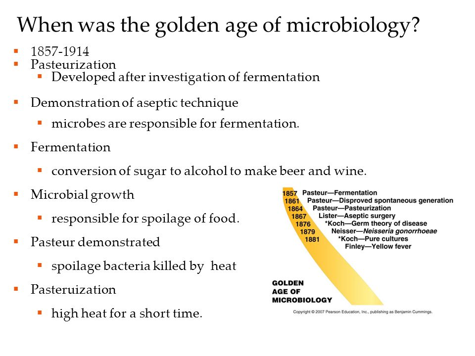 When was the golden age of microbiology.
