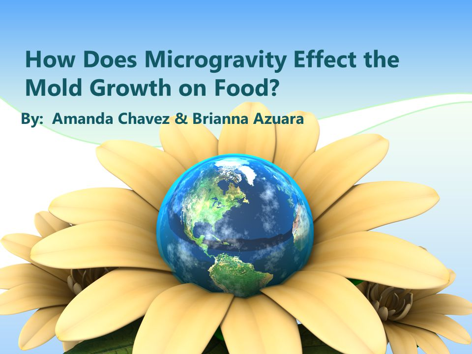 How Does Microgravity Effect the Mold Growth on Food? By: Amanda Chavez & Brianna Azuara