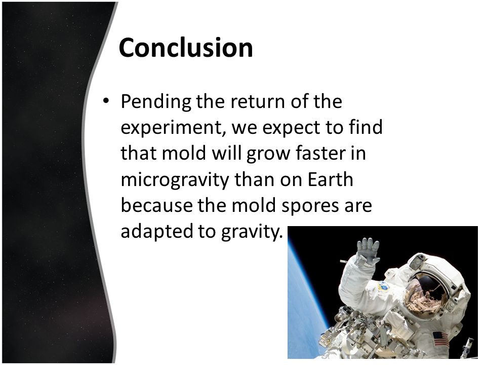 Conclusion Pending the return of the experiment, we expect to find that mold will grow faster in microgravity than on Earth because the mold spores ar
