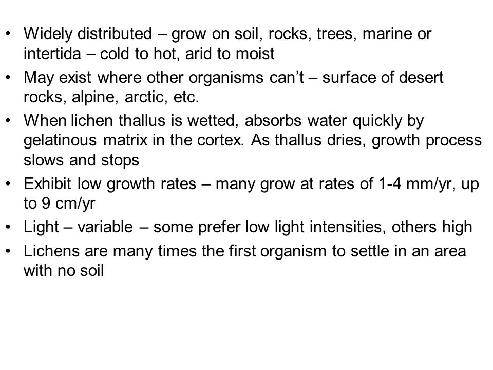 Widely distributed – grow on soil, rocks, trees, marine or intertida – cold to hot, arid to moist May exist where other organisms can't – surface of d