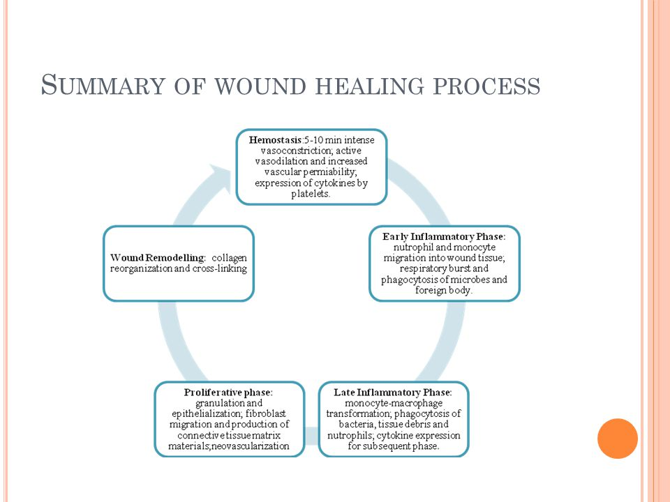 S UMMARY OF WOUND HEALING PROCESS