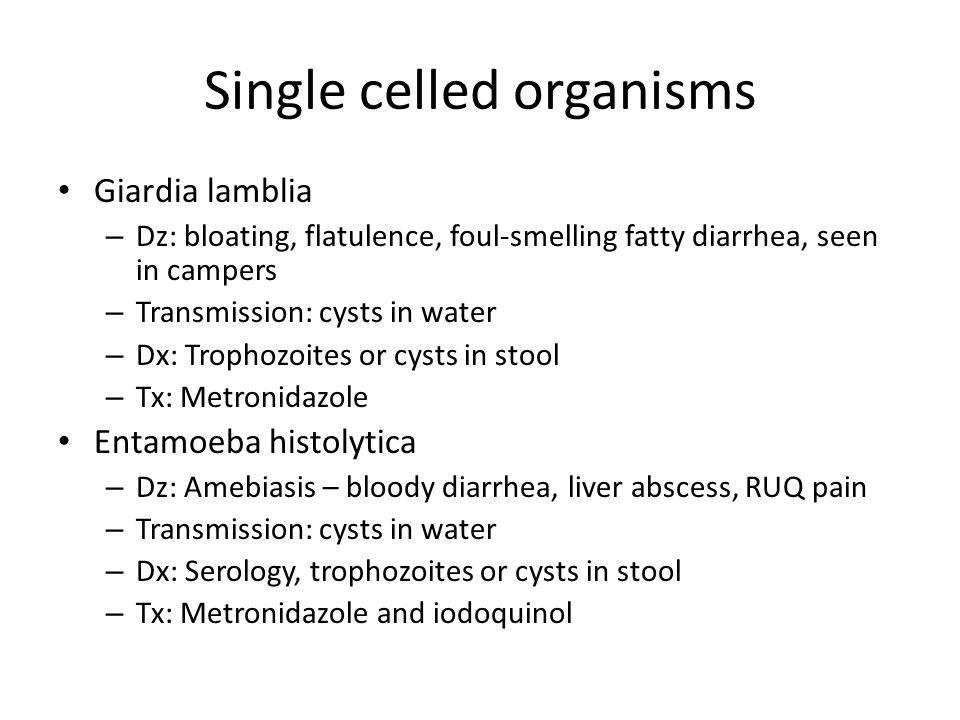 Single celled organisms Giardia lamblia – Dz: bloating, flatulence, foul-smelling fatty diarrhea, seen in campers – Transmission: cysts in water – Dx: