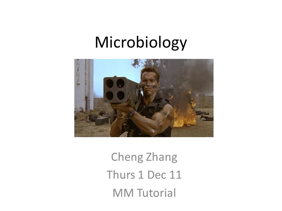 Microbiology Cheng Zhang Thurs 1 Dec 11 MM Tutorial