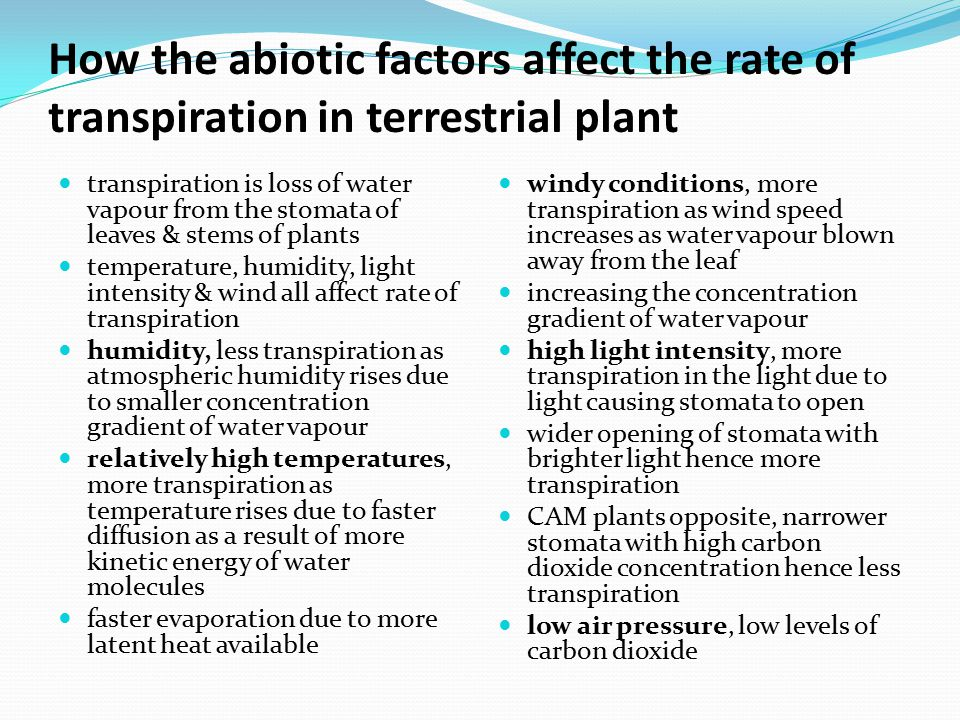 How the abiotic factors affect the rate of transpiration in terrestrial plant transpiration is loss of water vapour from the stomata of leaves & stems