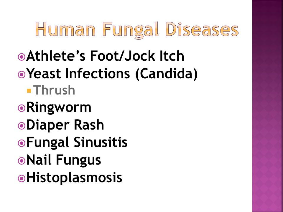  Athlete's Foot/Jock Itch  Yeast Infections (Candida)  Thrush  Ringworm  Diaper Rash  Fungal Sinusitis  Nail Fungus  Histoplasmosis