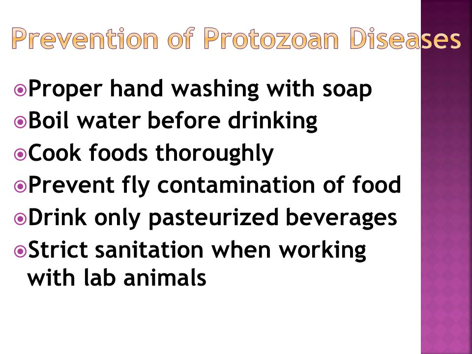  Proper hand washing with soap  Boil water before drinking  Cook foods thoroughly  Prevent fly contamination of food  Drink only pasteurized beverages  Strict sanitation when working with lab animals