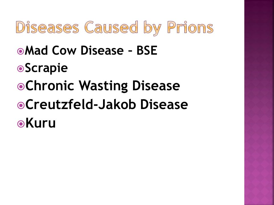  Mad Cow Disease – BSE  Scrapie  Chronic Wasting Disease  Creutzfeld-Jakob Disease  Kuru