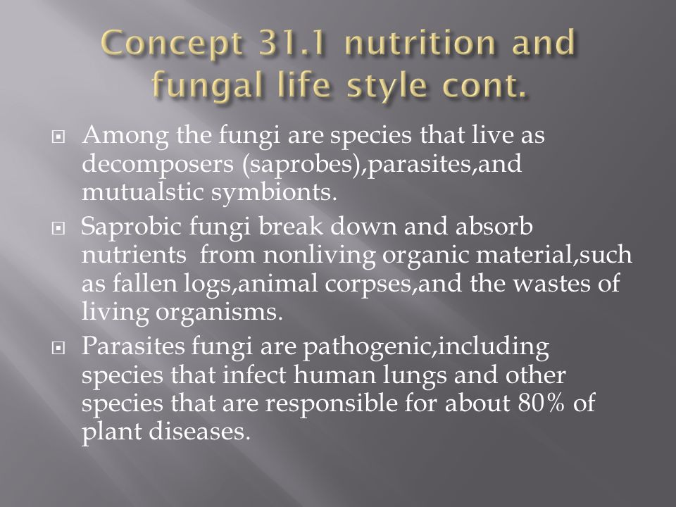  Fungi are well adapted as decomposers of organic material, including the cellulose and lignin of plant cell walls.