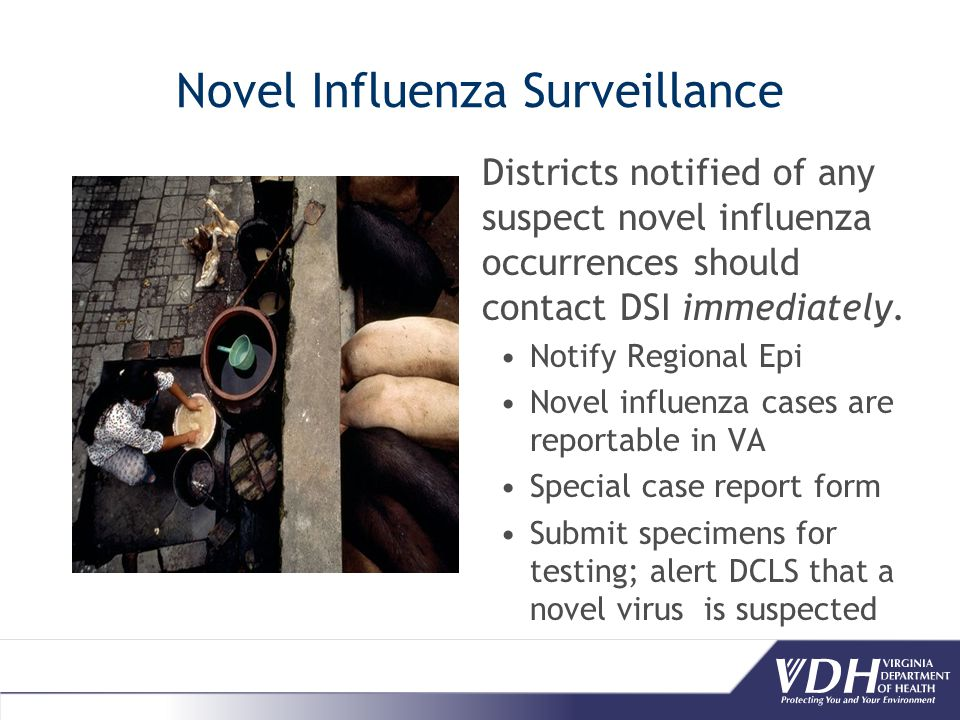 Novel Influenza Surveillance Districts notified of any suspect novel influenza occurrences should contact DSI immediately.