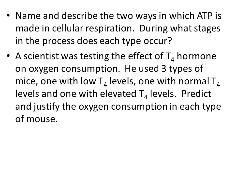 Name and describe the two ways in which ATP is made in cellular respiration.