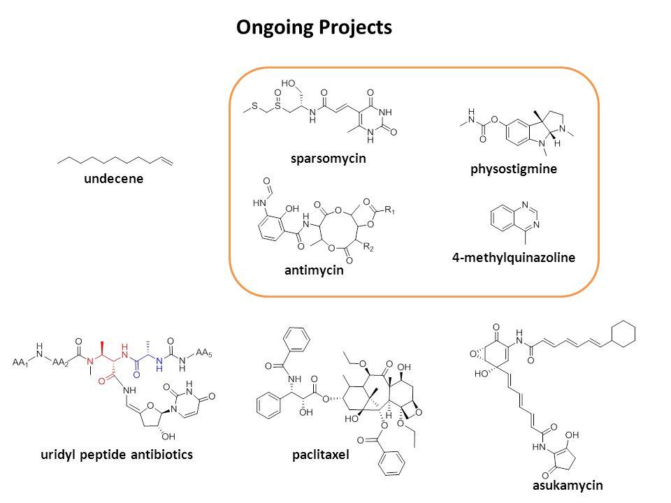 Ongoing Projects paclitaxel physostigmine undecene uridyl peptide antibiotics sparsomycin antimycin 4-methylquinazoline asukamycin