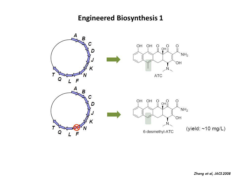 Engineered Biosynthesis 1 (yield: ~10 mg/L) Zhang et al, JACS 2008