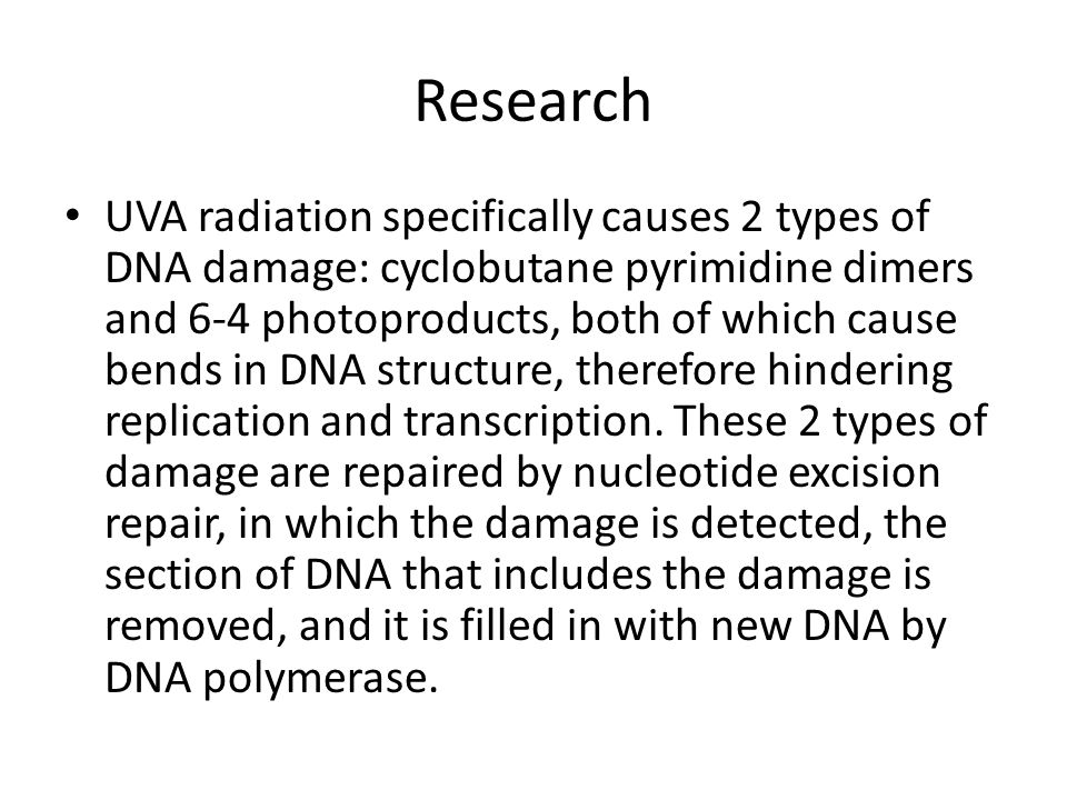 Research UVA radiation specifically causes 2 types of DNA damage: cyclobutane pyrimidine dimers and 6-4 photoproducts, both of which cause bends in DN