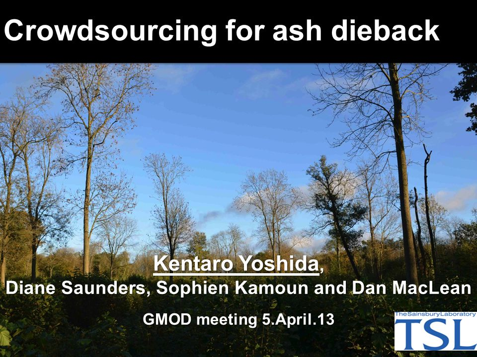 Kentaro Yoshida, Diane Saunders, Sophien Kamoun and Dan MacLean GMOD meeting 5.April.13