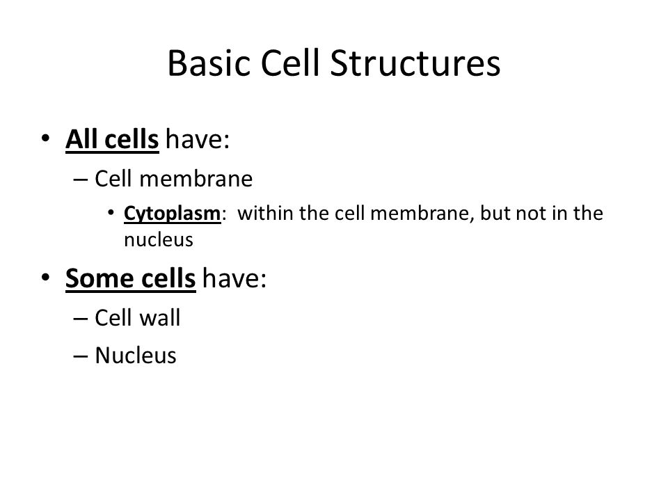 Basic Cell Structures All cells have: – Cell membrane Cytoplasm: within the cell membrane, but not in the nucleus Some cells have: – Cell wall – Nucle