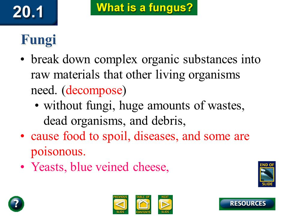 Section 20.1 Summary – pages 529-534 break down complex organic substances into raw materials that other living organisms need. (decompose) without fu