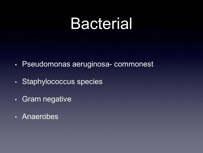 Bacterial Pseudomonas aeruginosa- commonest Staphylococcus species Gram negative Anaerobes