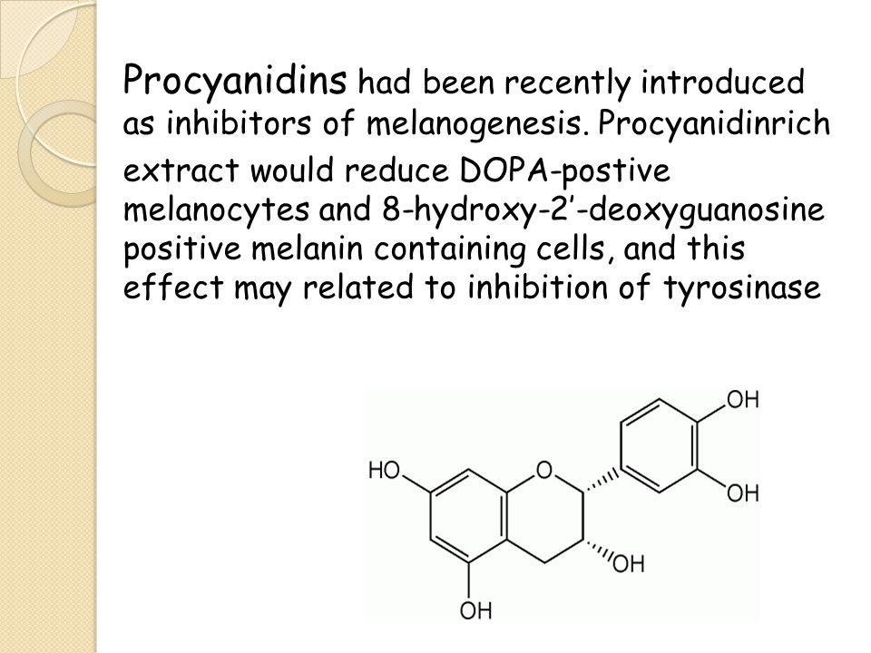 Procyanidins had been recently introduced as inhibitors of melanogenesis.