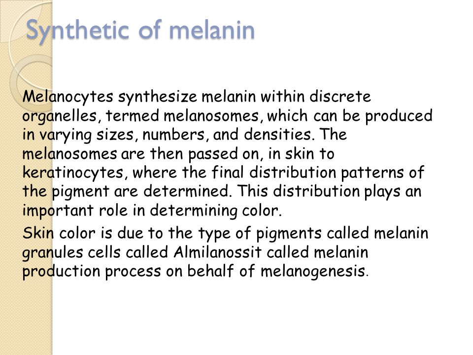 Synthetic of melanin Melanocytes synthesize melanin within discrete organelles, termed melanosomes, which can be produced in varying sizes, numbers, and densities.