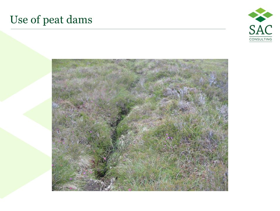 36 Use of peat dams